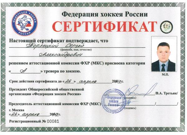Спортивный психолог тренер по хоккею Торлецкий Сергей